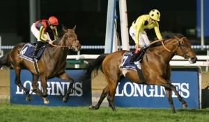 【凱旋門賞】 ポストポンド陣営、前走は70%のデキでキングジョージ馬を破ったと豪語する