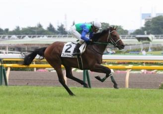 【競馬】 8月に佐々木厩舎に転厩したブレスジャーニー、菊花賞で復帰へ 鞍上は引き続き柴田善臣騎手
