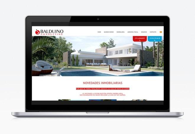 Diseño Web Balduino Consulting