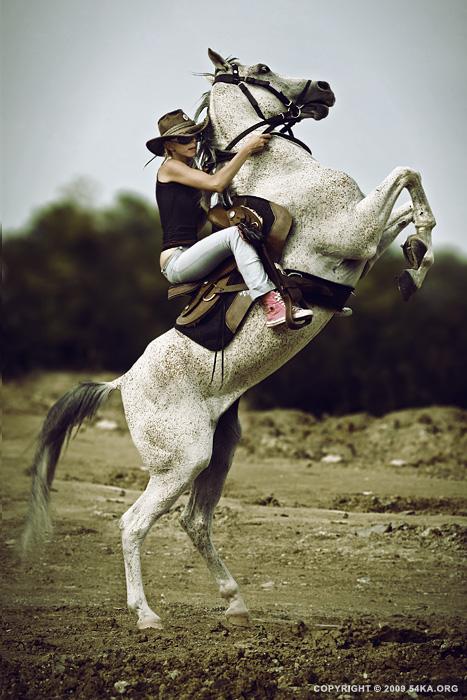 Wallpaper Cowboy Girl Horse Rider Xi 54ka Photo Blog