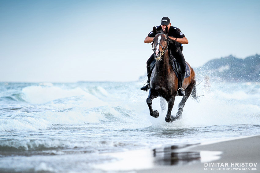 Girl Riding Horse Wallpaper Police Horses Running In The Water 54ka Photo Blog
