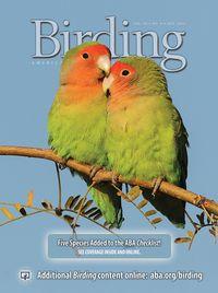 Nov Birding