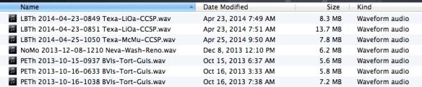 08-file management
