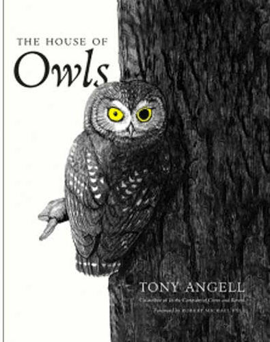 Angell, House of Owls
