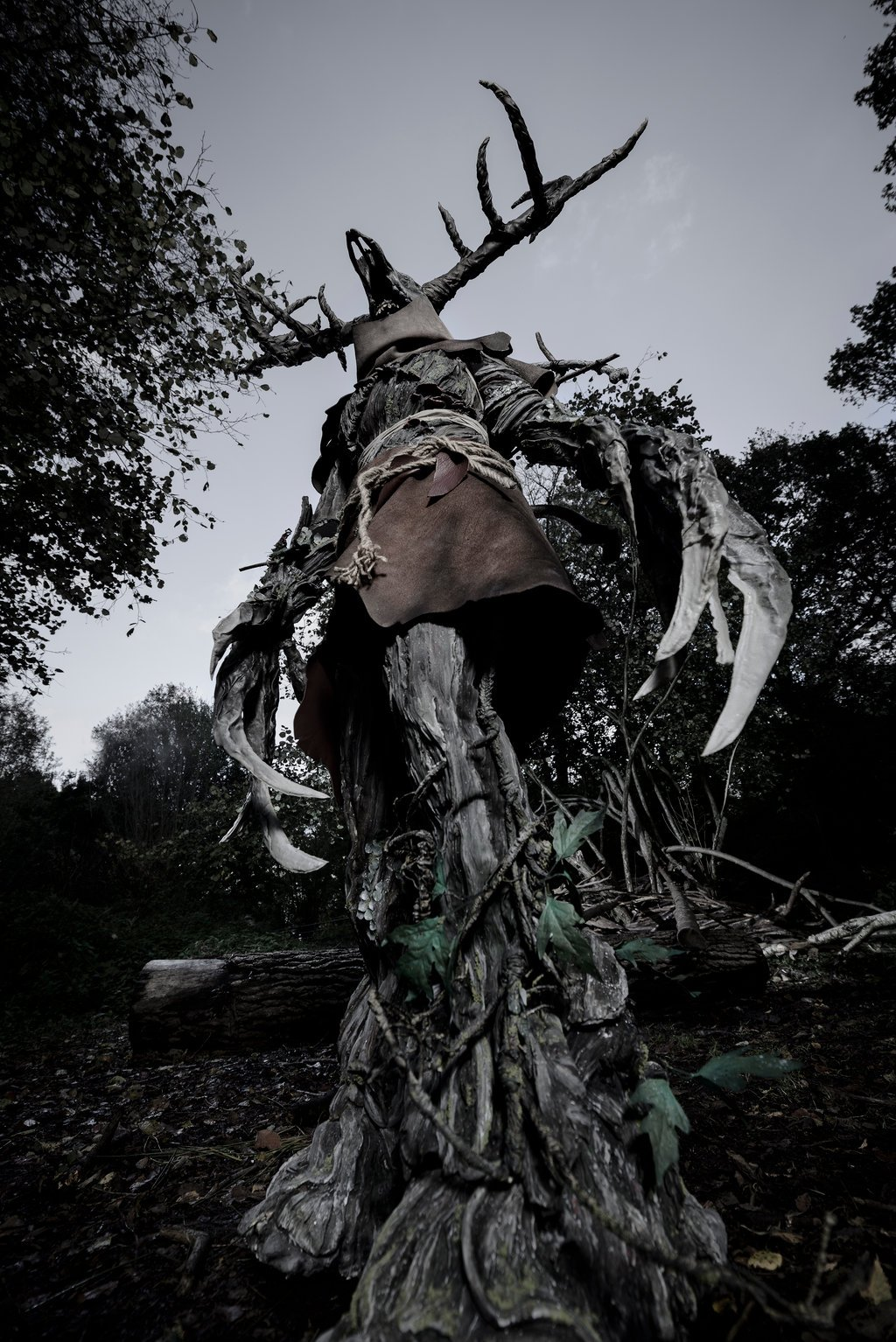 Wild Forest 3d Wallpaper Creepy Leshen Costume From The Witcher 3 171 Adafruit