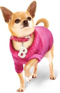 Fashion Week 2015: Dog Fashion Trends for Hip Pets