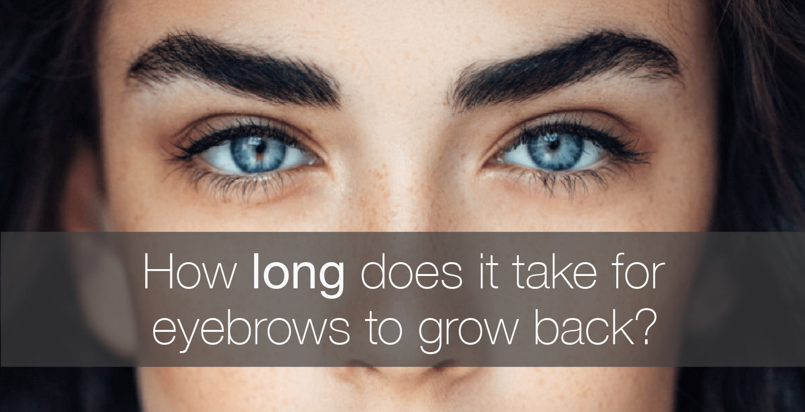 How Long Does It Take For Eyebrows To Grow Back Amalie Blog