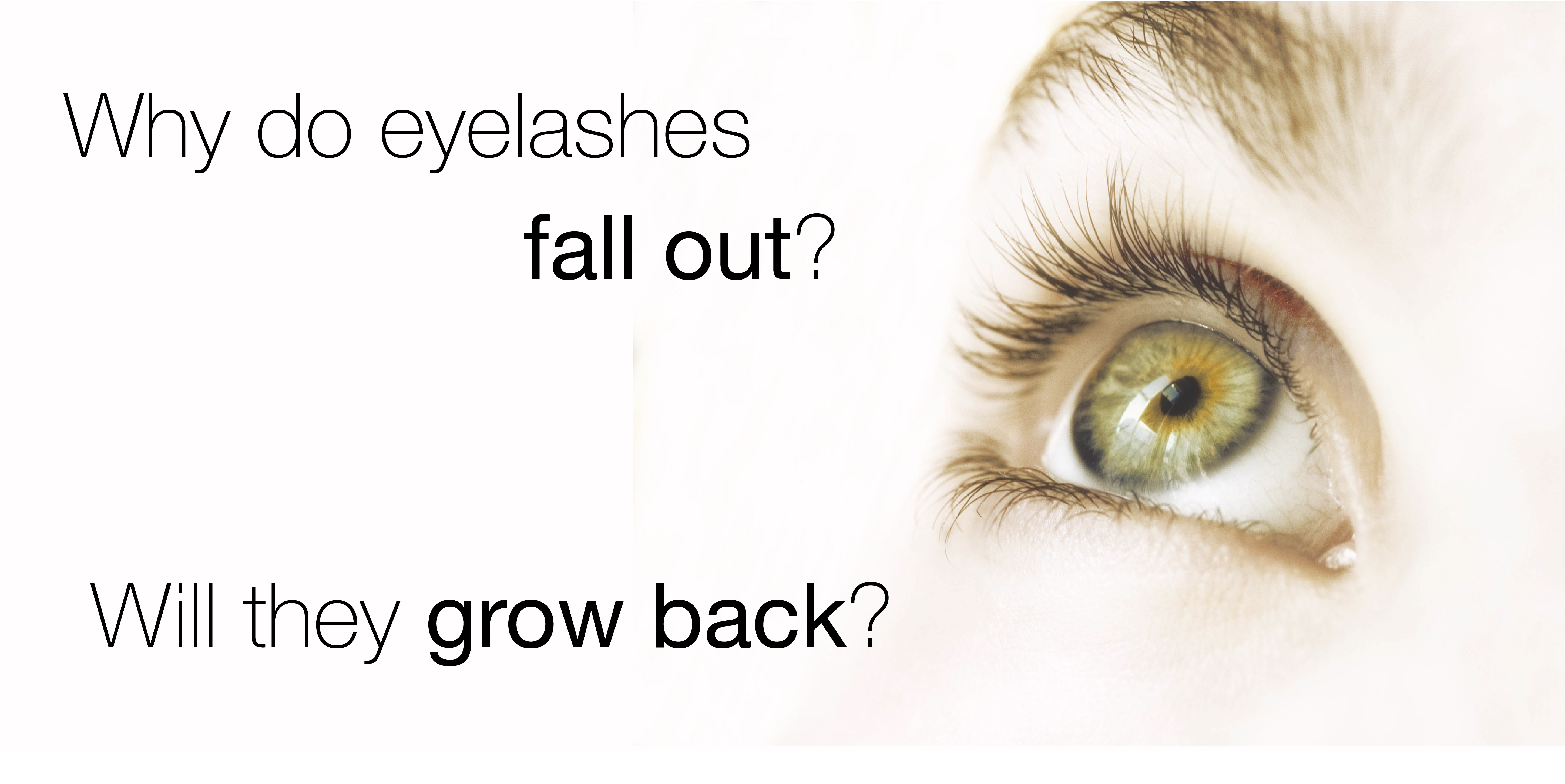 Beauty Qa Why Do Lashes Fall Out Will They Grow Back Amalie Blog