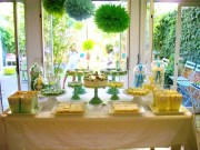 Summery Green Guest Dessert Bar Feature