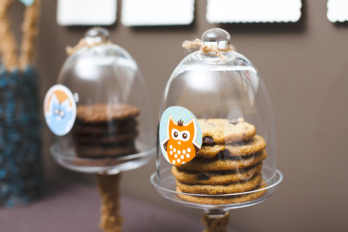 Woodland Sip and See Owl Dessert Table Cookies1 Woodland Sip & See Guest Dessert Feature