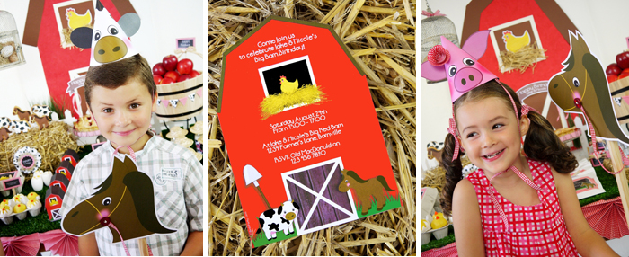 Barnyard Birthday Kids Parties cute party invitations