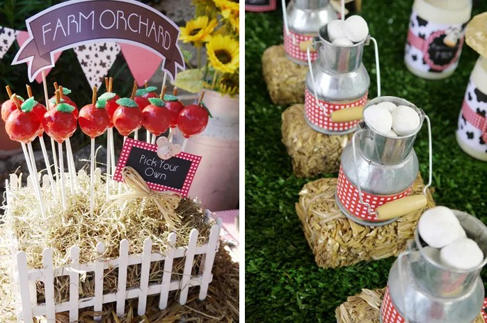 On The Farm Barnyard Kids Party Dessert Table