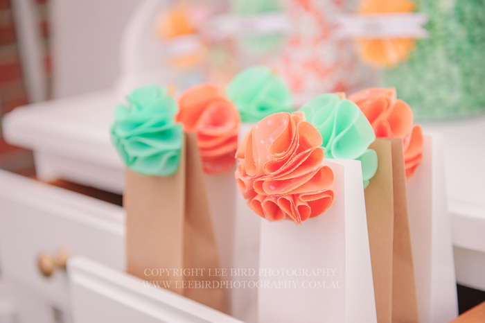 Circus Party Favor Bags1 Pretty Peach & Green Circus Guest Dessert Feature