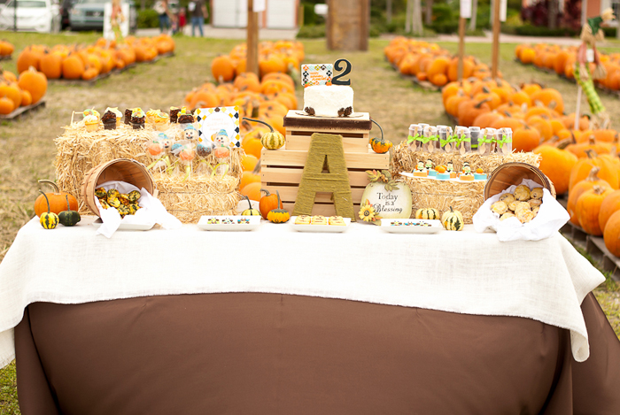 Pumpkin inspired dessert table Little Pumpkin Guest Dessert Feature