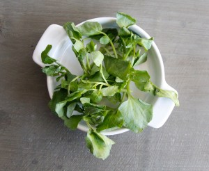 Watercress Nutrition