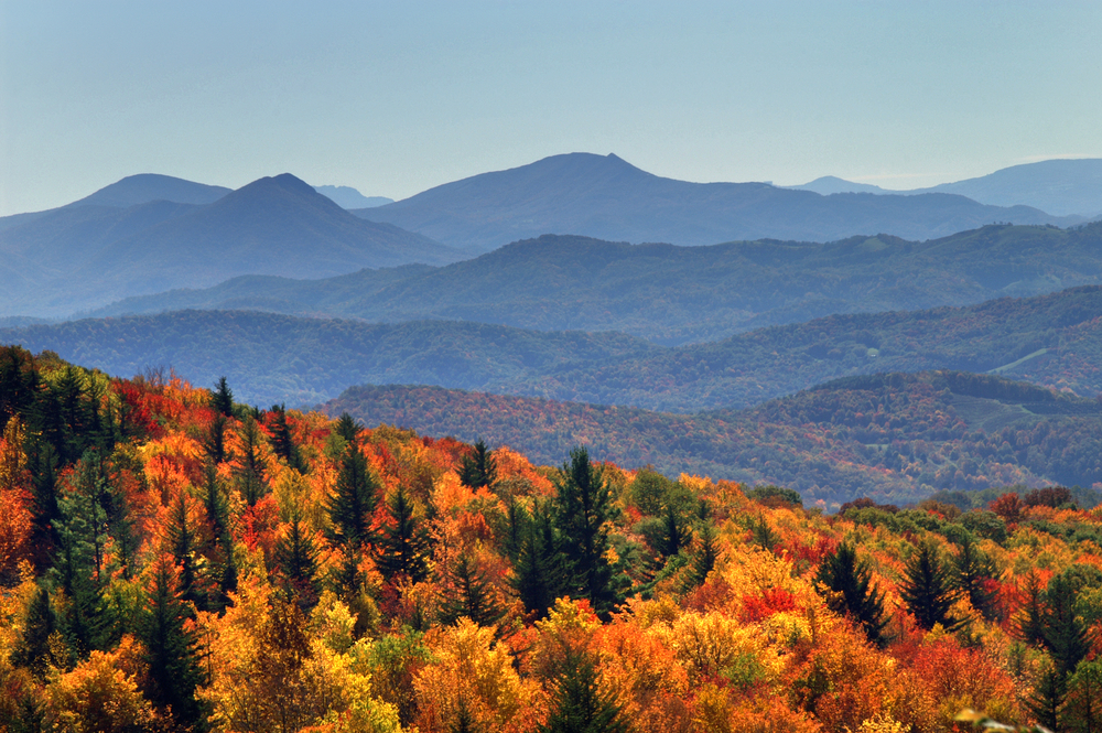 Smoky Mountains Fall Wallpaper 5 North Carolina Hikes Worth Taking This Fall Point Of Blue