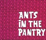 Ants In The Pantry (1970) - The Ant and the Aardvark