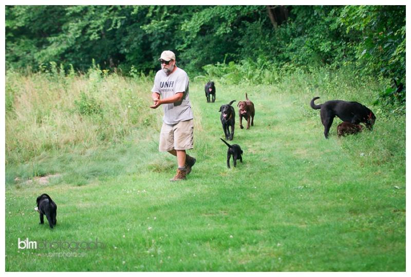 Webber-Puppies_072115-4069.jpg