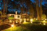 house-in-the-woods-night-solar-lights  %Image Name
