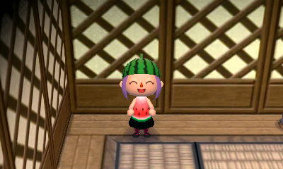 Watermelon Costume.