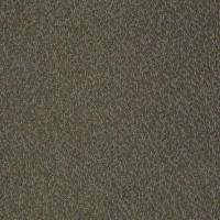 Stainmaster Pet Protect Carpet from Tuftex   Carpet ...