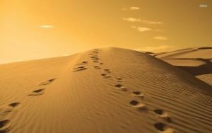 15125-footprints-on-a-sand-dune-1920x1200-nature-wallpaper
