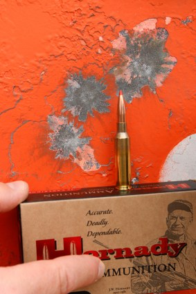 Hornady ammunition box in front of an orange steel target