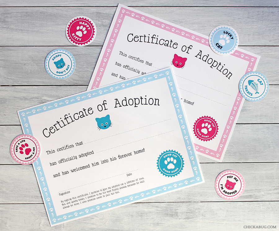 Free printable cat adoption kit Chickabug - blank adoption certificate template