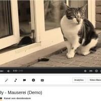 Nelly – Mauserei (Demo) – Video