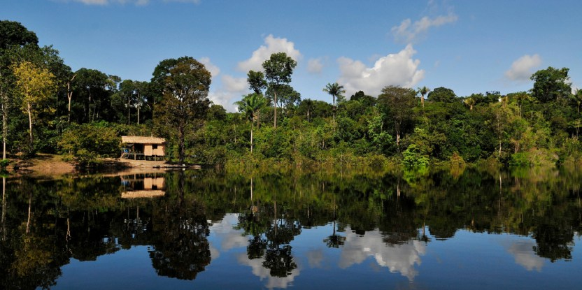 Amazon, Brazil. Photo by Neil Palmer/CIAT