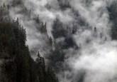 suatu teori baru menyatakan bahwa hutan menghasilkan angin membantu memompa air ke permukaan bumi. Kenneth J Gill