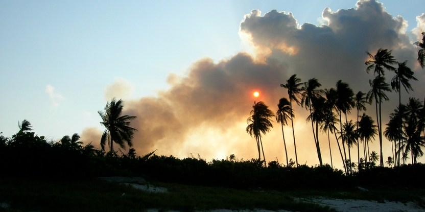 Analisis menunjukkan sebagian besar kebakaran di  bulan Juni  terjadi di luar perkebunan industri namun investigasi lapangan diperlukan guna menentukan penyebab kebakaran. Sam @ flickr