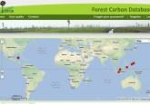 """Una herramienta en línea que puede ser usada para identificar factores que contribuyen a las emisiones y otras actividades, ayudará a que los países realicen sus propios inventarios con mejores estimados"""", dijo Daniel Murdiyarso, investigador principal del Centro para la Investigación Forestal internacional. Imagen de CIFOR/graphic"""