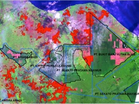 Figura 1: Análisis con sensores remotos de la Reserva de Biosfera Giam Siak Kecil-Bukit Batu. Los incendios de junio de 2013, mostrados  en color rojo intenso, están localizados dentro de las reservas forestales, plantaciones forestales y zonas de transición. Ver aquí para más detalles.hutan cagar, hutan tanaman dan dalam zona transisi.  Lihat di sini untuk lebih rinci.