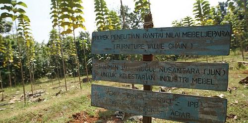 Sementara sertifikasi bagi produk perdagangan nyata seperti kopi dan kayu telah terbukti dan teruji, pergeseran ke arah sertifikasi jasa ekosistem masih dirasa sebagai hal baru. Dita Alangkara untuk CIFOR.