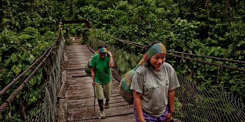 Bentang alam pedesaan berkontribusi baik dengan adaptasi dan mitigasi, menyerap dan menyimpan karbon seraya melindungi dampak perubahan iklim serta memungkinkan para petani memperkaya pilihan mata pencaharian, ujar peneliti dari Pusat Penelitian Kehutanan Internasional. Tomas Munita/CIFOR