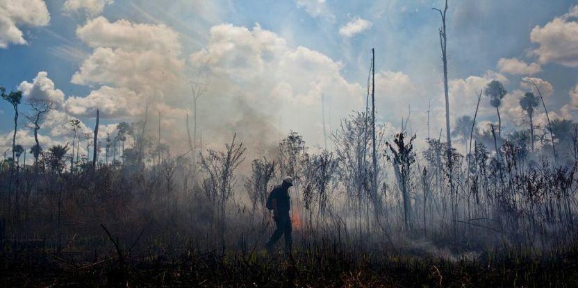 Como parte de la colaboración tripartita , los investigadores reunen datos sobre el clima, el uso del fuego, y el desarrollo de herramientas para prevenir incendios. Fotografía de: Ernesto Benavides