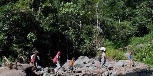"""Penelitian kami di Afrika menemukan, anak-anak yang tinggal di dalam masyarakat yang dikelilingi tutupan hutan memiliki keragaman makanan lebih tinggi dan mengonsumsi lebih banyak buah serta sayur,"""" kata Amy Ickowitz, ilmuwan CIFOR. Photo: Aulia Erlangga/CIFOR"""