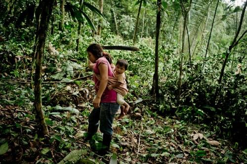 Mujer campesina corta pequeños arbustos con un machete en la provincia de Orellana, Ecuador. Nuevo estudio explora como la tenencia de los bosques afecta la habilidad de los hogares rurales de generar ingresos de los bosques. Foto: Tomas Munita/CIFOR