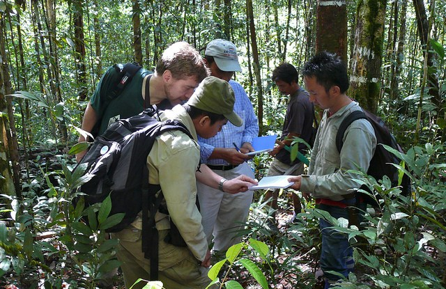 Researchers in the field, Kalimantan, Indonesia. Douglas Sheil/CIFOR photo