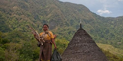 REDD+: Pengurangan Emisi dari Deforestasi dan Degradasi Hutan – adalah suatu mekanisme internasional yang didukung oleh PBB yang menyediakan insentif finansial bagi negara-negara berkembang untuk menjaga tegakan hutannya dan kemudian mempertahankan serta meningkatkan cadangan karbon. Photo: CIFOR