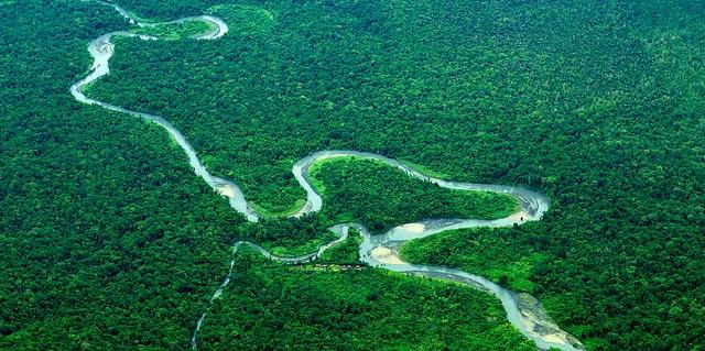 Papua, Indonesia. Mokhamed Edliadi/CIFOR