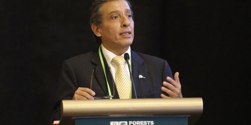 Menteri Lingkungan Hidup Peru Manuel Pulgar-Vidal menyampaikan pidatonya dalam acara Forests Asia Summit 2014 di Shangri-La Hotel, Jakarta, Indonesia, Selasa, 6 Mei 2014. (CIFOR)