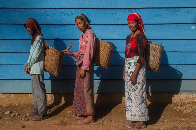 Nueva guía busca promover la participación de las mujeres en las decisiones forestales