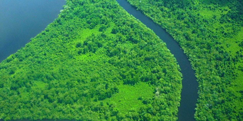 Costa del Caribe, Nicaragua. Un estudio sugiere que el éxito de REDD+ requiere una reforma que incluya la tenencia y gobernanza de los paisajes donde actúa. Fotografía: Gema Lorio.