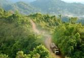 Truk-truk pengangkut kayu di Kalimantan, Indonesia. Memastikan keberlanjutan komoditas berbasis hutan semacam itu seperti kayu adalah satu dari sejumlah tantangan yang paling mendesak di bentang alam tropis di seluruh dunia. Jan van der Ploeg/foto CIFOR