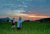 Agricultoras trabajan hasta la puesta del sol en East Nusa Tenggara, Indonesia. Se cree que las mujeres rurales son más vulnerables que los hombres  frente al cambio climático, aunque es necesaria mayor investigación. Foto: Aulia Erlangga / CIFOR