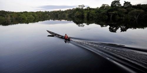 Fajar di perbatasan Taman Nasional Juma di Amazon Brasil. Satu pemangku kepentingan kunci dalam berbagai usaha untuk menekan emisi melalui pengurangan deforestasi di negara-negara berhutan tropis sebagian besarnya tidak dijumpai, sebuah penelitian baru mengindikasikan. Neil Palmer/foto CIFOR.