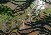 Vista aérea del Parque Nacional Halimun Salak en Java Occidental, Indonesia. Las prácticas agrícolas y forestales que podrían impulsar la producción a menudo se ven obstaculizadas por falta de capital. Kate Evans / CIFOR