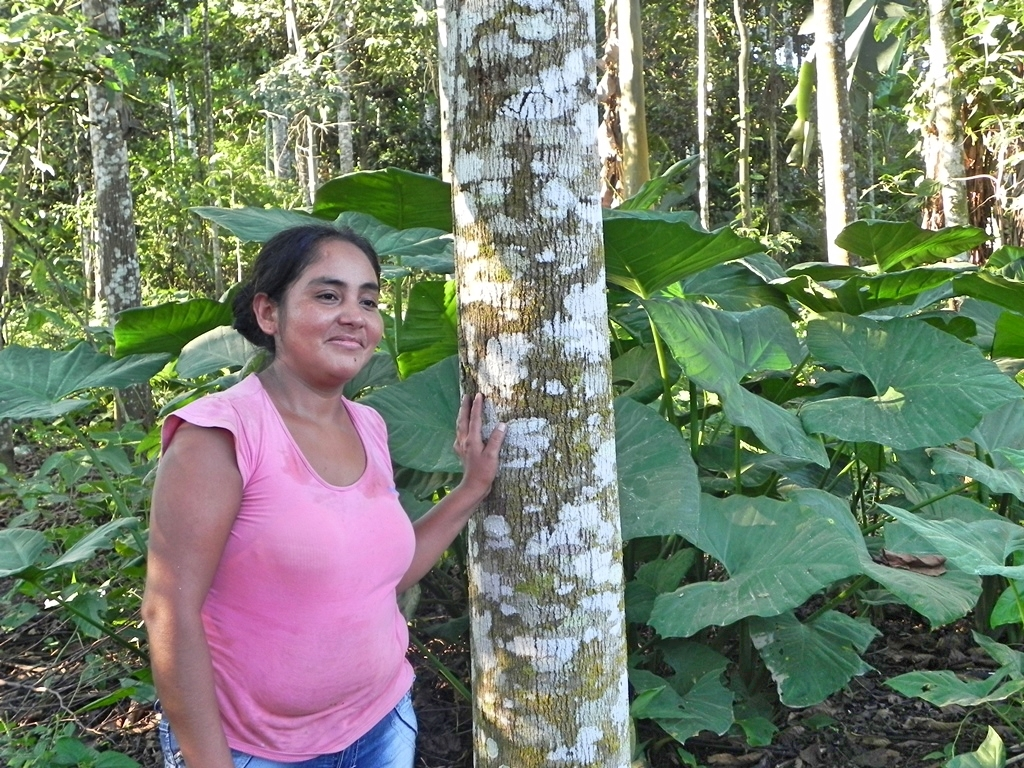 A little-known big producer: Will forest policy reform in Peru support farm-forestry?